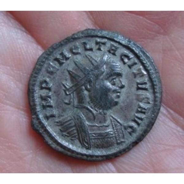 Tacitus - SECVRIT PERP