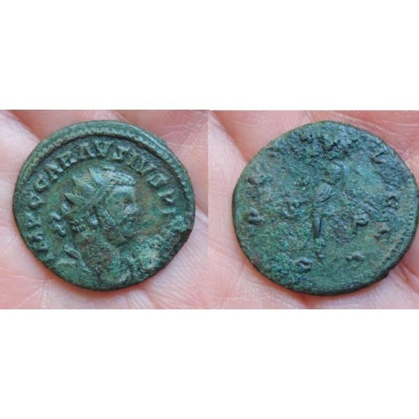 Carausius -  schaars PAX AVGGG zeer interessant (zie verhaal)! (910)