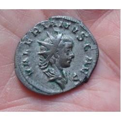 Valerianus II | RomanCoinShop.com