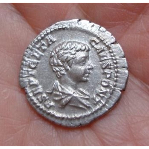 Geta - de prins van de jeugd BIJNA PRACHTIG (790)