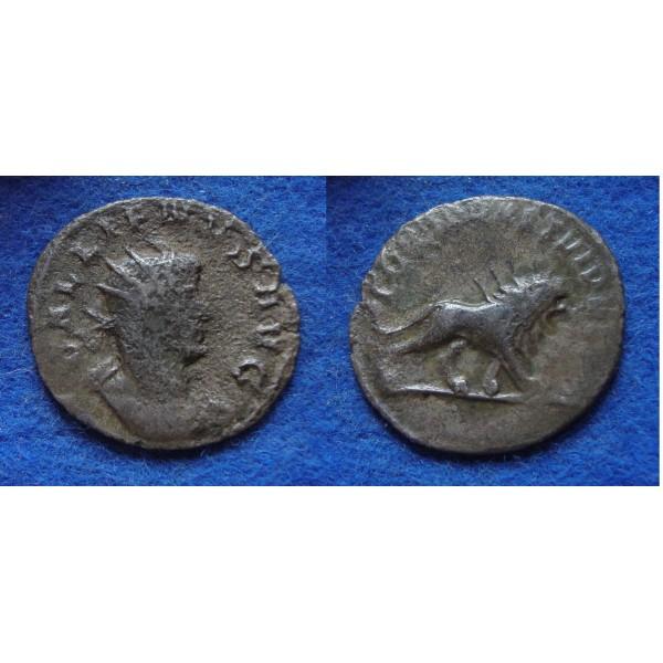 Gallienus -  Herinnering aan de slachting op de Alemannen ZELDZAAM! (F1829)